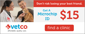 Get a microchip ID